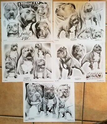 NOS production (5) tattoo flash 2005 robert pho grey wash pitbull dog skindesign