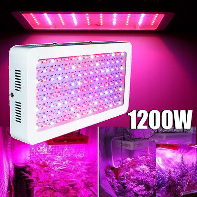 LED Grow Light Panel Lamp for Hydroponic Plant Growing Full Spectrum 1200W