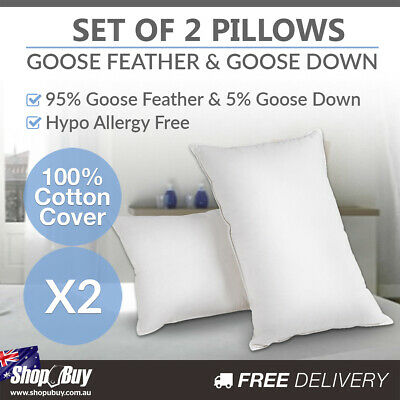 2 x Goose Down Feather Pillows Hypo-Allergy Free Luxury Cushions Twin Pack White