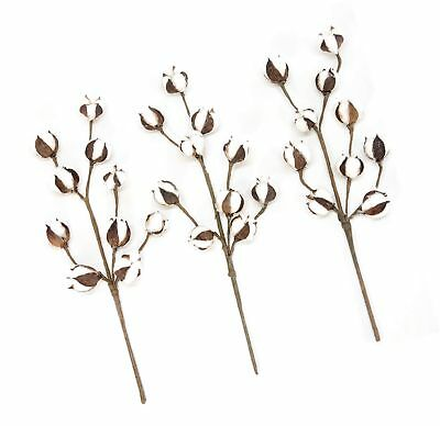 Silvercloud Trading Co. New Cotton Stems 3 Pack-10 Buds
