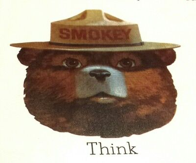 13 Vintage Smokey The Bear Usda, Forest Service & NfesFire Prevention Posters