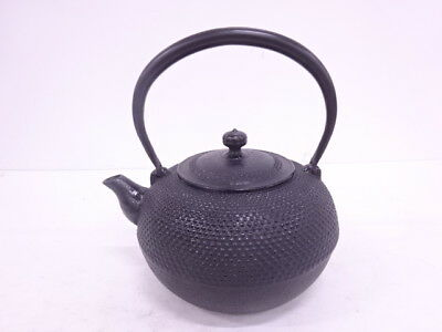 3725353: Japanese Iron Ware Nanbu Tekki Tea Pot / Artisan Work