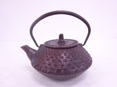 3725364: Japanese Iron Ware Nanbu Tekki Tea Pot / Artisan Work