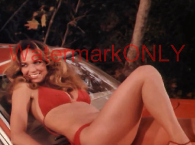 Daisy duke bikini photo reply))) You