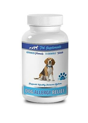 immune dog treats - ALLERGY RELIEF FOR DOGS - dog quercetin