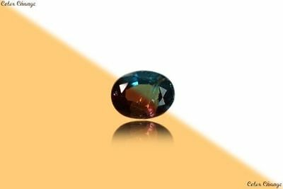 0.200 Ct Unique 100% Nr'' Dancing Color Change Alexandrite Gemstone Aaa Oval !!!