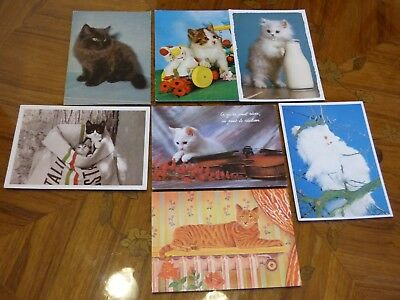 Lot De 7 Cartes Cpm Sur Le Theme Des Chats