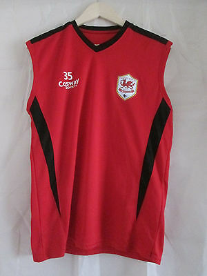 mens CARDIFF CITY FOOTBALL CLUB TRAINING TOP SIZE LARGE MEDIUM
