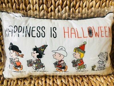 Pottery Barn kids Happiness is Halloween pillow snoopy peanuts holiday NEW