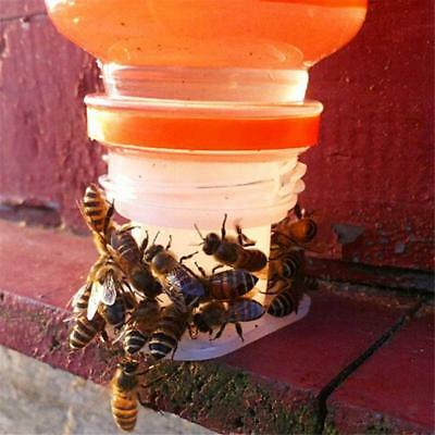 10pcs Perforated Bee Water Feeder Automatic Bee Drinking Equipment