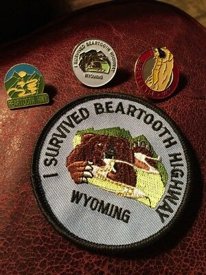 I Survived Beartooth Highway Wyoming WY Grizzly Bear Embroidered PATCH + 3 PINS