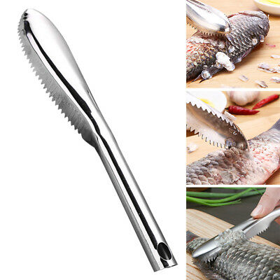 Fishing Accessories Fish Scraper Cleaning Remover Scaler Stainless Steel