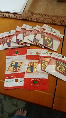 Girl Scouts CADETTE badges Lot China