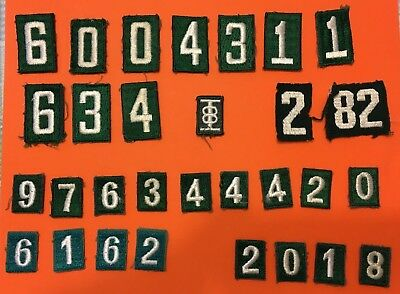 Lot Of 30 Girl Scout Numbers. Used & Unused