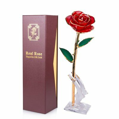 Sinvitron Gold Dipped Rose, Long Stem 24k Gold Dipped Real Rose Lasted Forever