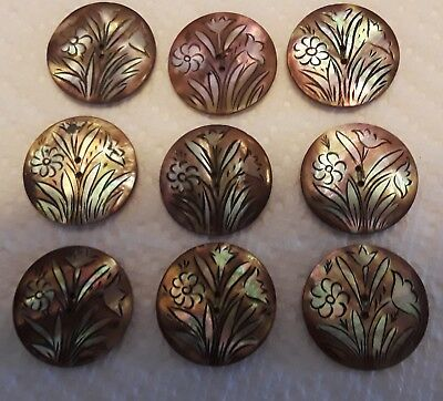 Antique Mother Of Pearl Hand Painted Floral Smokey Buttons (9)