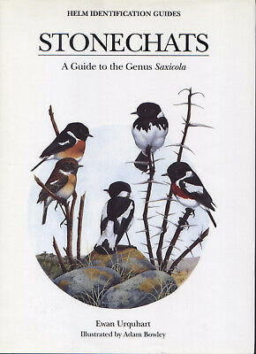 Stonechats (Helm Identification Guides) by Ewan Urquhart and Adam Bowley