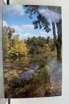 Wisconsin WI Iowa IA Mississippi River Summer Bows Out Postcard Old Vintage Card