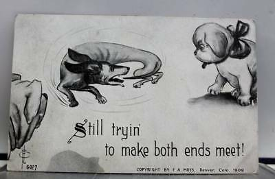Comic Cartoon Still Trying to Make Both Ends Meet Postcard Old Vintage Card View
