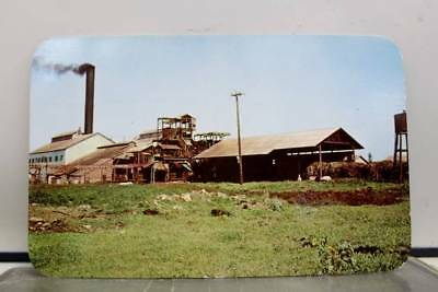 Hawaii HI Sugar Mill Kahuku Postcard Old Vintage Card View Standard Souvenir PC