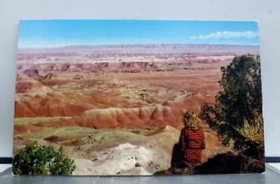 Arizona AZ Painted Desert Monument Postcard Old Vintage Card View Standard Post