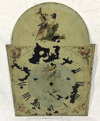 """Lovely Antique Long Case Grandfather Clock Arched Dial Birds 19"""" By 13"""""""