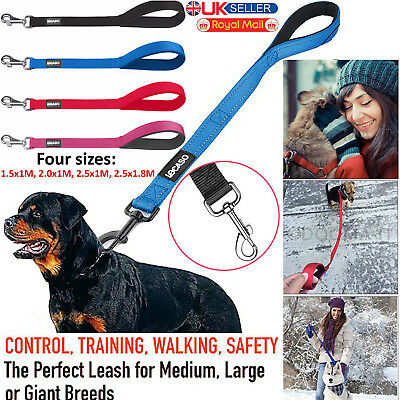 Nylon Dog Lead Leash Head Collar with Padded Handle Puppy Pet Control Rope Lead
