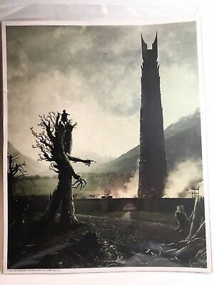 """Lord of the Rings Loot Crate Exclusive 8"""" x 10""""  Art Print Tolkien Ent Hobbit"""