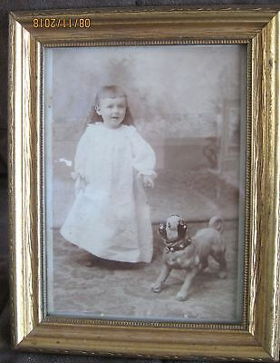 CABINET PHOTO Of BABY GIRL With Cute Life Sized Pug Dog Figurine