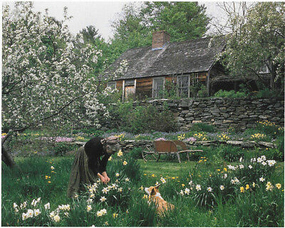Tasha Tudor In Corgi Cottage Garden