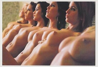 Postcard Pinup Risque Nude Stunning Girl Extremely Rare Photo Post Card 8419