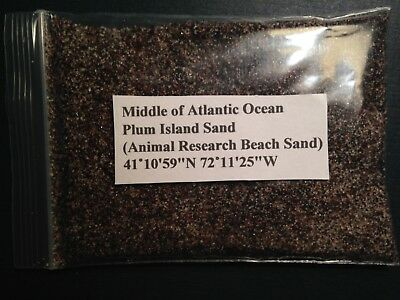 Plum Island Sand Sample, Middle of Atlantic, Animal Research Beach sand, 60ml ++