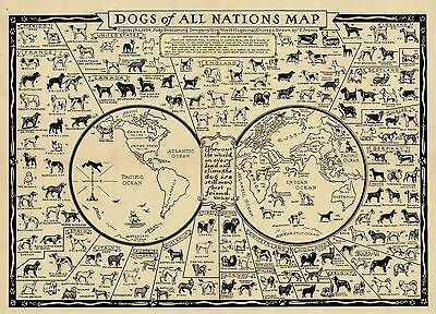 1936 Pictorial Map Dogs of all Nations Kennel Club Poster Print Wall Art Decor