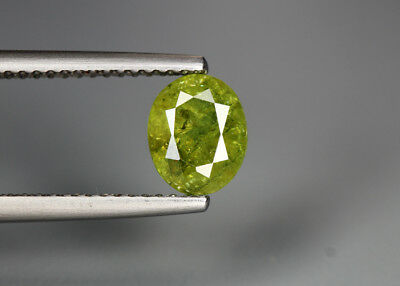 1.40 Cts_Glittering Rare Antique Collection_100 % Natural Demantoid Green Garnet