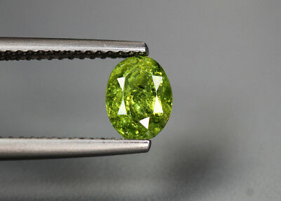 1.01 Cts_Glittering Rare Antique Collection_100 % Natural Demantoid Green Garnet