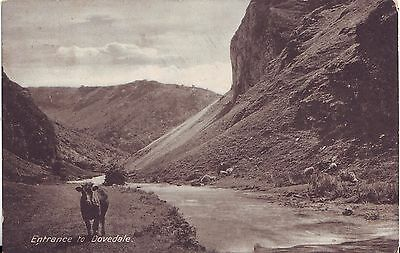 UK Entrance to Dovedale pre WWI postcard