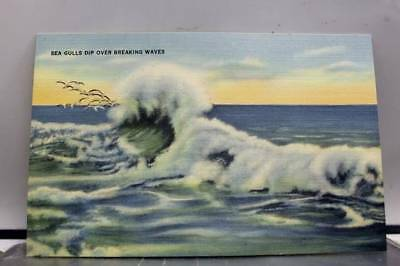Scenic Breaking Waves Sea Gulls Dip Postcard Old Vintage Card View Standard Post