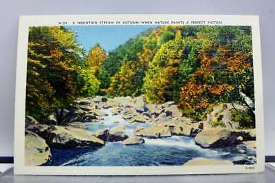 Scenic Mountain Stream Autumn Nature Perfect Picture Postcard Old Vintage Card