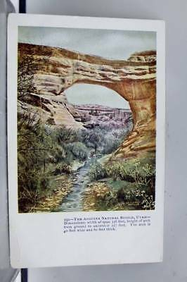 Utah UT Augusta Natural Bridge Postcard Old Vintage Card View Standard Souvenir