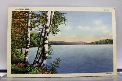 Scenic Peaceful Scene Postcard Old Vintage Card View Standard Souvenir Postal PC