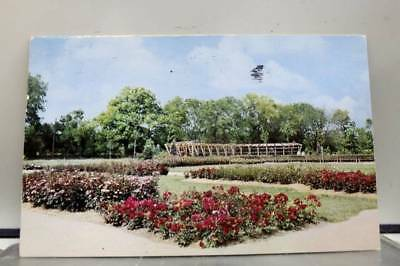 Ohio OH Columbus Park Of Roses Postcard Old Vintage Card View Standard Souvenir