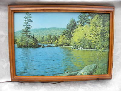 Vintage Helmscene Lighted Picture of Fulton Lake, N.Y. No. 89 w/Wooden Frame