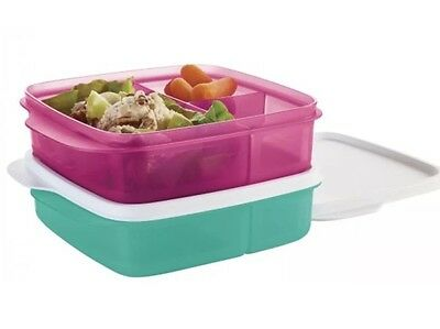 2 Tupperware Lunch-It Divided Square Set Fuschia Kiss Pink & Laguna Green New