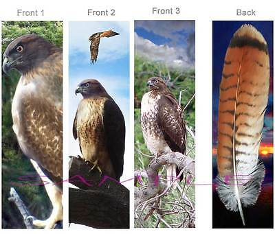 3 Lot-Red Tailed HAWK BOOKMARK Tail Feather ART Bird of Prey Book Card Figurine