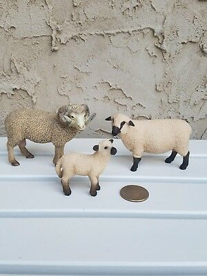 Schleich Sheep, Ram & Lamb Standing Toy Figurines - Lot of 3