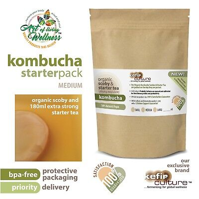 Premium Organic Kombucha Scoby and Starter Tea (makes 2 litres) PRIORITY MAIL