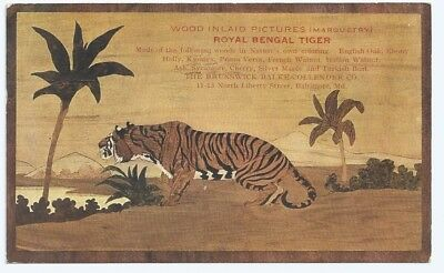 Postcard, picture of wood inlaid Royal Bengal Tiger. Baltimore Md.