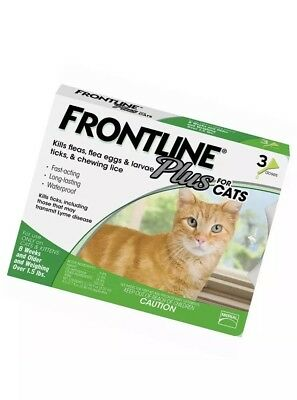 Frontline Plus for Cats and Kittens (1.5 pounds and over) Flea and Tick Treatmen
