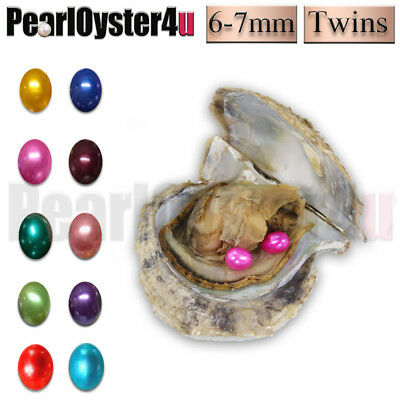 1pc Twins!Saltwater Akoya Oysters with TWO Rice Pearls In Tem Mixed Colors 6-7mm