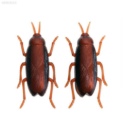 53BF Funny Simulation of Cockroaches Pet Cat Dog Interactive Play Playing Toy
